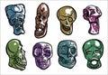 Vector linear Skulls