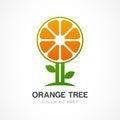 Vector logo design template. Orange tree illustration. Garden, o Royalty Free Stock Photo
