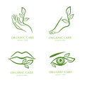 Vector logo, label, emblem set. Female hand, foot, eye, lips with green leaves, .