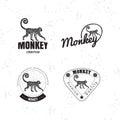 Vector logo set with Jungle Monkey Royalty Free Stock Photo