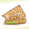 Vector logo Tamarind Fruit
