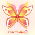 Vector luxury butterfly background design. Colorfull concept. Royalty Free Stock Photo