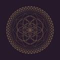 Vector Mandala Sacred Geometry...
