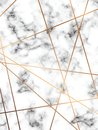 Vector marble texture design with golden geometric lines, black and white marbling surface, modern luxurious background Royalty Free Stock Photo