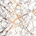 Vector marble texture design with golden splatter lines, black and white marbling surface, modern luxurious background Royalty Free Stock Photo