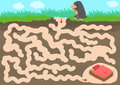 Vector maze game with find mole room