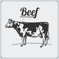 Vector meat labels. Butcher`s business logos. Silhouettes of farm animals.