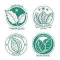 Vector mint leaf logo icons or menthol spearmint labels