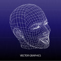 Vector model of face illustration Royalty Free Stock Image