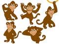 Vector Monkeys Set