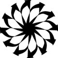 Abstract Vector Black and white Mandala ornament, star, flower petals illustration