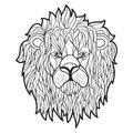 Vector monochrome hand drawn illustration of lion face. Royalty Free Stock Photo