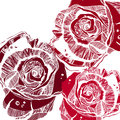 Vector multicolor rose flowers. Vector stylized roses. Royalty Free Stock Photo