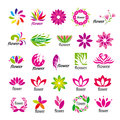 Vector multicolored floral logos collection of Royalty Free Stock Image
