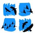 Vector nature illustration bird art design graphic animal style silhouette cute