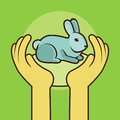 Vector not tested on animals sign human hands protecting rabbit Stock Images