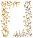 Vector ornament with flowers and berries. Royalty Free Stock Photos