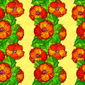 Vector ornate poppy flowers seamless pattern decorative Stock Image
