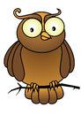 Vector owl cartoon on branch Royalty Free Stock Photography