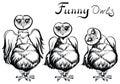 Vector owl illustration.