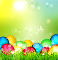 Vector painted Easter eggs lying in the grass Stock Photos