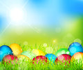 Vector painted Easter eggs lying in the grass Stock Images