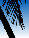 Vector Palm Tree Royalty Free Stock Images