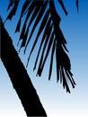 Vector a palmeira Imagens de Stock Royalty Free