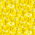 Vector pattern with hand drawn daisy flowers grunge floral seamless texture for web print easter home decor spring summer fashion Royalty Free Stock Image