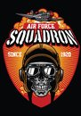 Pilot air force squadron