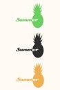 Vector pineapple tropical fruit logo set