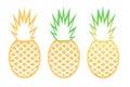 Vector pineapple tropical fruit outline set