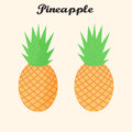 Vector pineapple tropical fruit set in flat style