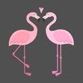Vector pink flamingos illustration.