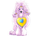 Vector pink Poodle dog with gold heart Stock Photos
