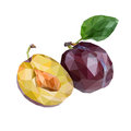 Vector plums isolated Royalty Free Stock Photo