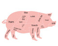 Vector pork chart Stock Images