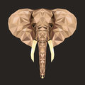 Vector portrait of elephant polygonal. Triangle illustration of animal for use as a print on t-shirt and poster. Geometric low pol