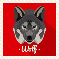 Vector portrait of a wolf. Symmetrical portraits of animals. Vector Illustration, greeting card, poster. Icon. Animal face. Royalty Free Stock Photo
