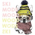 Vector poster with close up portrait of beagle dog.Ski mode mood. Puppy wearing beanie, scarf and snow goggles.