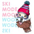 Vector poster with close up portrait of labrador retriever dog. Ski mode mood. Puppy beanie, scarf and snow goggles.
