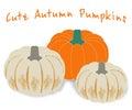 Vector pumpkins pumpkin illustration cute autumn orange and white Royalty Free Stock Photo