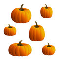 Vector Pumpkins Set Stock Image
