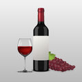 Vector realistic grapes brunch, wine glass and bottle of red wine illustartion. Design template in EPS10. Royalty Free Stock Photo