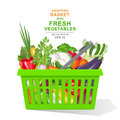 Vector realistic illustration. Colorful fresh organic vegetables and herbs in green shopping basket isolated on white background Royalty Free Stock Photo
