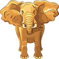 vector Red African elephant Royalty Free Stock Photo