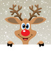 vector red nosed reindeer holding blank paper Royalty Free Stock Photo