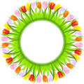 Vector Round frame of colorful spring tulips Royalty Free Stock Photography