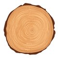 Vector saw crosscut tree trunk with rings Royalty Free Stock Photography