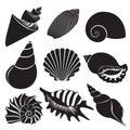 Vector sea shells. Seashell silhouettes set isolated. Royalty Free Stock Photo